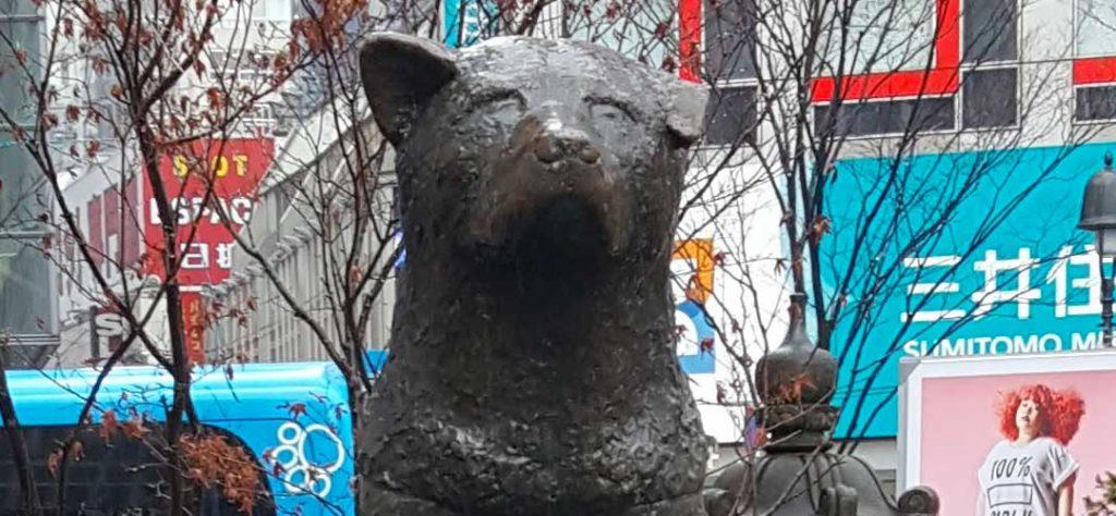Statue de hachiko, chien de Shibuya